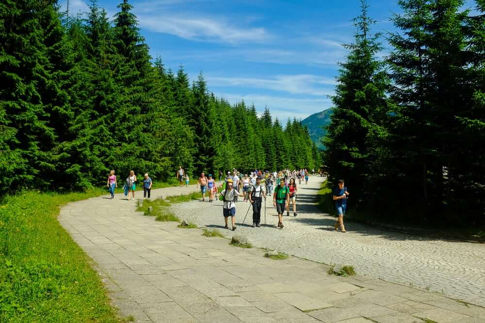 Fayno Camp Zakopane Summer